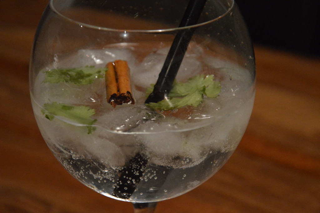 Darnley's View Spiced Gin & Tonic